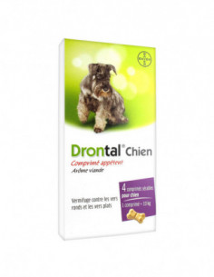 Bayer Drontal Chien...