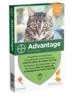 Bayer Advantage 40 Solution...